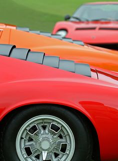 Lamborghini Miuras at Concorso