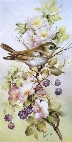 63 ideas for flowers vintage printable decoupage Images Vintage, Vintage Cards, Vintage Ideas, Decoupage Vintage, Bird Pictures, Amazing Pictures, China Painting, Bird Prints, Bird Art
