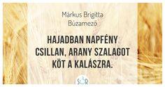 #haiku #vers #búza