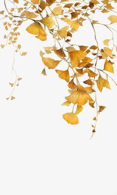 가을,노란색,은행나무,나뭇잎,누런 나뭇잎이,노란색 낙엽,만화 Chinese Painting, Chinese Art, Watercolor Flowers, Watercolor Paintings, Plant Art, Art Graphique, Leaf Art, Flower Wallpaper, Asian Art