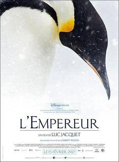 """Con el verano instalado ya en nuestro entorno, con temperaturas """"subiditas de tono"""", esta semana vamos a hacer un viaje muy, pero muy refrescante. Realizamos una travesía por la tierra de los hielos eternos, así nos desplazamos a la Antártida, un inmenso continente y un océano cubierto de hielo. Una Sesión doble de cine, en una naturaleza en estado puro, lejos del acoso explotador de nuestra civilización. El director francés Luc Jacquet nos presenta su último film """"El emperador""""."""