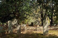 Decatur's historic cemetery
