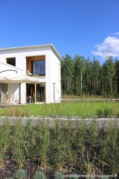 Grass planting in Housing fair Finland 2013