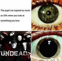 Hollywood Undead is love, Hollywood Undead is Life.
