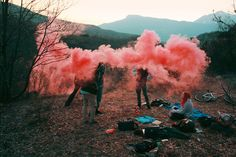 Get lost in the wild with Francis Flower | iGNANT.de