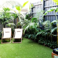 If you are working with the best backyard pool landscaping ideas there are lot of choices. You need to look into your budget for backyard landscaping ideas Small Tropical Gardens, Tropical Garden Design, Small Courtyard Gardens, Small Courtyards, Modern Tropical, Outdoor Gardens, Modern Gardens, Small Gardens, Beach Gardens