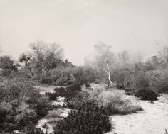 Robert Adams - Santa Ana Wash, Next to Norton Air Force Base
