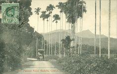 Postcard of the Passara Road, Badulla, Sri Lanka #SriLanka #Badulla #Road #Postcard  photo by  Vladimir Tkalčić  (https://www.flickr.com/photos/morton1905/)