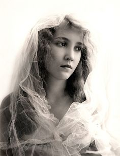 bessie love pin up Old Hollywood Glamour, Hollywood Stars, Classic Hollywood, Love Pictures, Vintage Pictures, Bessie Love, Old Photography, Vintage Girls, Vintage Woman