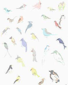 Pássaros 🐦
