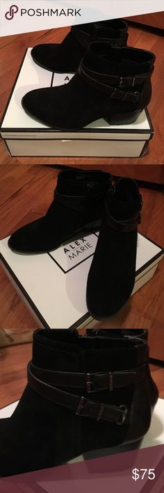 Alex Marie booties in black suede & buckle detail Alex Marie booties in black suede & buckle detail. Zipper on inside of booties. Never worn shoes are beautiful thought I could fit into a 7 but were too small for me  Alex Marie Shoes Ankle Boots & Booties