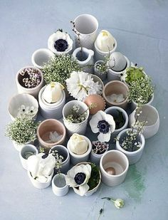 All Egg Cups