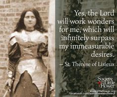 Yes, the Lord will work wonders for me, which will infinitely surpass my immeasurable desires. Therese of Lisieux Sainte Therese, St Therese Of Lisieux, Inspirational Catholic Quotes, Religious Quotes, Catholic Saints, Roman Catholic, Saint Quotes, Santa Teresa, Daily Devotional