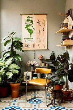 "thevisualvamp: ""Plant life "" meow"