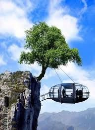 Suspended tree house.