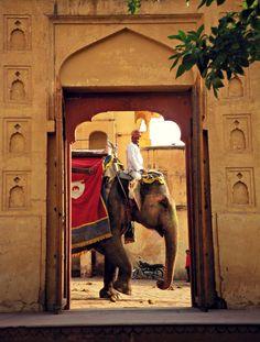 indiaincredible: In the Doorway , India