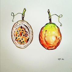 Passionfruit - original artwork by Pip Boydell
