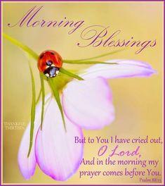 Morning Blessings morning good morning morning quotes good morning quotes morning blessings