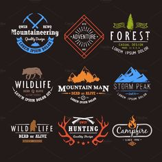 Set of premium vector labels on the themes of wildlife, nature, hunting, travel, wild nature, climbing, life in the mountains, survival. Retro, vintage, casual design. These illustrations