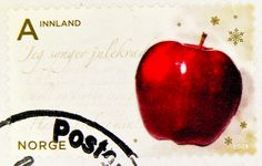 great norwegian xmas stamp Noreg Norge Innland Class Jul apple francobolli natale bollo Norvegia sello navidad Noruega selos natal Norway postage A postes timbre noel Norvège briefmarke Weihnachtsmarke Norwegen 邮票 挪威 yóupiào Nuówēi марка Норвегия Norvégia Norwegian Christmas, Stamp Collecting, My Stamp, Online Gifts, Postage Stamps, Xmas, Letters, Book Covers, Apples