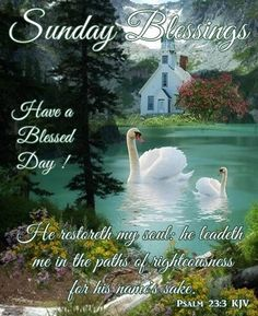 """SONDAY BLESSINGS: Psalm 23:3 (1611 KJV !!!!) """" He restoreth my soul: he leadeth me in the paths of righteousness for his name's sake."""" HAVE A BLESSED DAY !!!! Happy Sunday Quotes, Blessed Sunday, Good Day Quotes, Have A Blessed Day, Daily Quotes, Psalm 23 3, Psalms, Robert Kiyosaki, Word Of Faith"""