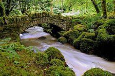 Killane Glen and Waterfall, Ireland Faerie Magazine's photo.