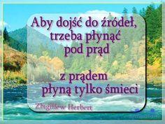 #Wiedza #Prawda #JasnowidzJacek