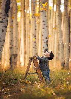 "Little boy/ Autumn Wonder - ***SALE SALE SALE - JUST $99!!! LEARN MY EDITING SECRETS!!! ENDS TONIGHT AT MIDNIGHT!!!*** BUY HERE NOW!---> <a href=""http://www.ljhollowayphotography.com/shop/october-2014-live-webinar-recording/"">SHOP</a>"