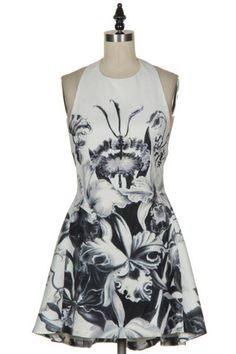 Force of Nature Fit & Flare Halter Dress - Black + White
