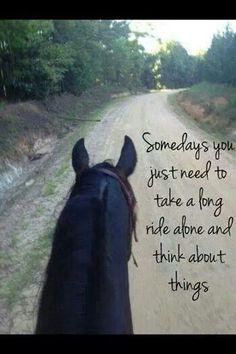 Horse quote ♥