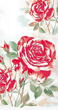 Rose Boutique red Guest Towels 192 ct