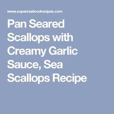 Pan Seared Scallops with Creamy Garlic Sauce, Sea Scallops Recipe