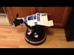 Dog Riding Roomba - R2D2 Star Wars Inspired Costume - YouTube #puppy #dog #terrier #bostonterrier #roomba #irobot #dogsonroombas #roombadog #youtube #video #costume #starwars #r2d2 #maythefourthbewithyou #theforce #robot