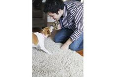 How to Fix Carpet Torn Up by Dogs | eHow