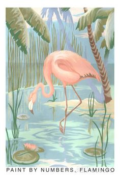Paint by Numbers, Flamingo Posters at AllPosters.com