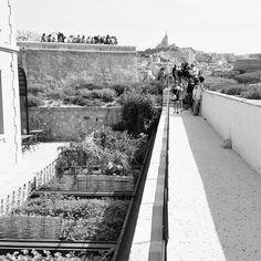 Fort Saint-Jean Bonne-Mère soleil... #Marseille #MuCEM