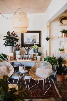 Three of our favorite (and best) stores and shops for shopping in Austin Texas! (First up, Frond Plant Shop)