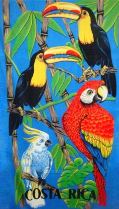 "Costa Rica Beach Towel - Size 30"" x 58""."