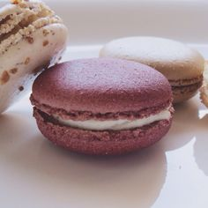 Red Velvet • Praline • Coffee PARIS Gourmet macarons. Coffee In Paris, French Cafe, Gelato, Macarons, Doughnut, Red Velvet, Cookies, Chocolate, Desserts