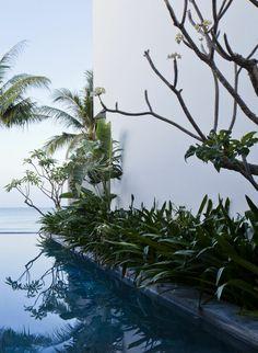 Oceanique Villas / M