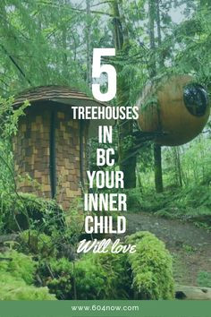 Some of the most whimsical accommodations in the province. Holiday Destinations, Vacation Destinations, Vacation Spots, Vacations, Columbia Travel, Canada Travel, British Columbia, Vancouver Travel, Vancouver Island