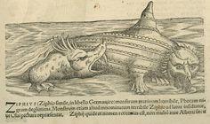 """Артефакты, диковинки, интересности... - Существа из """"Historia Animalium"""" 1551-87"""