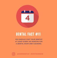A dental did you know for everyone!! 1800dentist.com