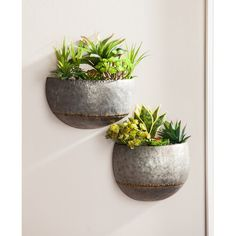 Williston Forge These 2 metal wall planters can display your favorite plants. The 2 semi-circle planters have faux brass Sauder accents. The planters are made from durable galvanized metal. Ceramic Wall Planters, Metal Hanging Planters, Corten Steel Planters, Hanging Plants, Concrete Planters, Wall Mounted Planters Indoor, Cheap Planters, Rustic Planters, Modern Planters