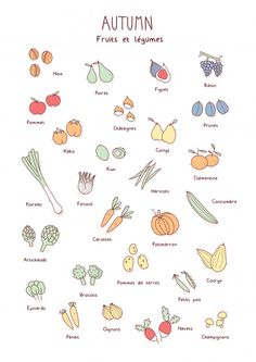 Doodles fruits et légumes automne Fruit Illustration, Food Illustrations, Doodle Drawings, Doodle Art, Fruit Doodle, Autumn Doodles, Vegetable Drawing, Food Doodles, Fall Fruits