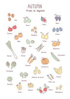 Doodles fruits et légumes automne