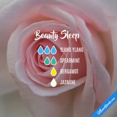 Beauty Sleep - Essential Oil Diffuser Blend by lenora Essential Oils For Sleep, Essential Oil Diffuser Blends, Doterra Oils, Doterra Essential Oils, Jasmine Essential Oil, Doterra Diffuser, Helichrysum Essential Oil, Diffuser Recipes, Aromatherapy Oils