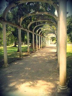 Jardim Botânico, Rio de Janeiro, Brasil.
