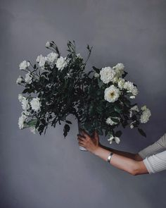 White Roses from Ruby Mary Lennox - photo made in our studio.