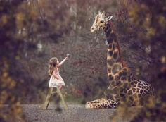 Today wherever you go, carry the intention of peace, love, and harmony in your heart.  ~ D. Chopra Image : Tara Lesher